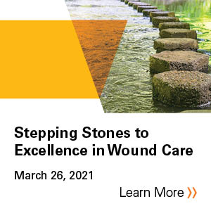 2021 Stepping Stones to Excellence in Wound Care Banner